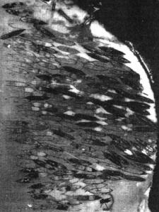 MB-aerial-1942
