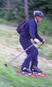 Grass_skier