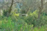 Valdanos-camping-abandoned-caravan-6