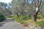 Valdanos-camping-area-1