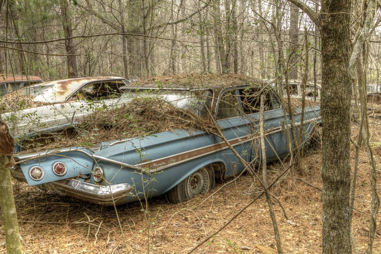 California Barn Yard Find Of Classic Cars